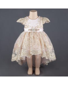 Princess Daliana Girls Blush Embroidered Gold Thread Dress Size 3m-24m | 1059 Blush