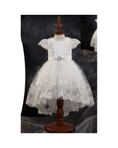 Princess Daliana Girls Dress Offwhite High Low Embroidered Tulle Silver Thread Size 3m-7 | Baby Christening Gowns 1059 Ivory