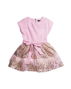 DRESS PINK BODICE GOLD BROCADE SKIRT FEATHER TRIM