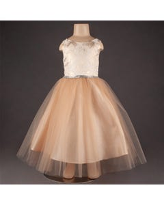 DRESS BEIGE ROSES EMBOSSED BODICE TULLE SKIRT JEWELLED BELT