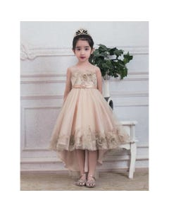 GOWN CHAMPAGNE GOLD FLOWER APPLIQUE BODICE & HEM TAIL