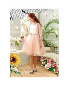 DRESS & HRCLIP POWDER PEARL & FLOWER TRIM TULLE